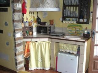 Lovely La Guancha Studio rental with Balcony - La Guancha vacation rentals