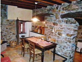 Nice 1 bedroom House in Pieve di Teco - Pieve di Teco vacation rentals