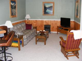 Olympic Peninsula Vacation Getaway! - Port Angeles vacation rentals
