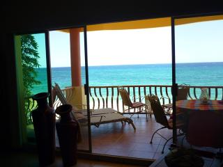 Perfect Condo with Internet Access and A/C - Buenavista vacation rentals