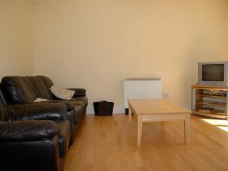Modern spacious Holiday Apartment which sleeps 6 - Galway vacation rentals