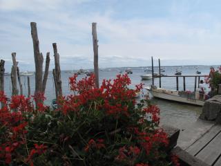 chambres d'hôtes bassin d'arcachon (arès) - Ares vacation rentals