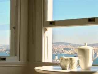 elegance and fantastic views in galata - Istanbul vacation rentals
