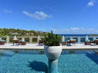 Perfect 5 bedroom House in Gustavia - Gustavia vacation rentals