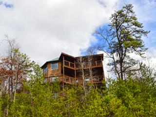 A View For All Seasons - Pigeon Forge vacation rentals