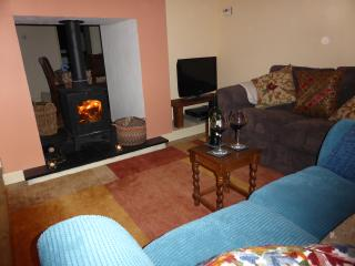 Charming House with Dishwasher and Washing Machine - Dinas Mawddwy vacation rentals
