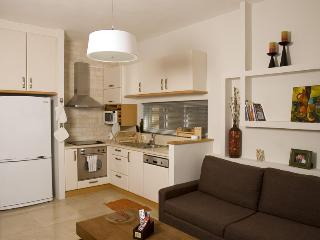 Amazing 2BR apt near the Banana Beach Tel Aviv - Jaffa vacation rentals