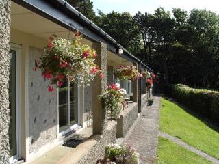 Beaumaris Cottage, Plas Heulog, Llanfairfechan - Llanfairfechan vacation rentals
