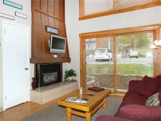 Nice 1 bedroom Apartment in Steamboat Springs - Steamboat Springs vacation rentals