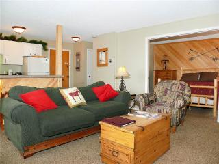 Storm Meadows East Slopeside - SE040 - Steamboat Springs vacation rentals