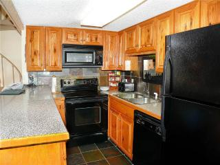Storm Meadows East Slopeside - SE077 - Steamboat Springs vacation rentals