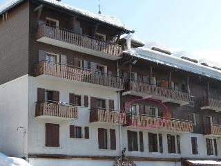 Nice Condo with Television and Long Term Rentals Allowed (over 1 Month) - La Clusaz vacation rentals