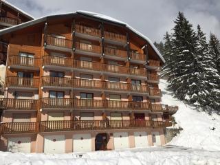 Fresh & modern ski studio - Drouzin le Mont - Drouzin le Mont vacation rentals