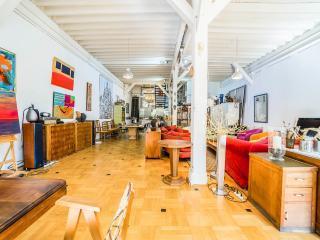 HugeLoft w Garden,Parking, sleeps 6-12, 3 bed 3ba - Paris vacation rentals