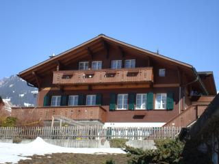 Nice Condo with Internet Access and Wireless Internet - Grindelwald vacation rentals