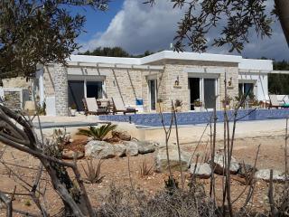 2 bedroom Villa with Internet Access in Kamilari - Kamilari vacation rentals
