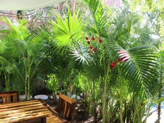 Lovely private comfortable 2 bedroom with Pool - Tulum vacation rentals