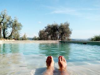 Offerta nuova apertura.Piscina,idromassaggio. WiFi - Limite Sull'Arno vacation rentals