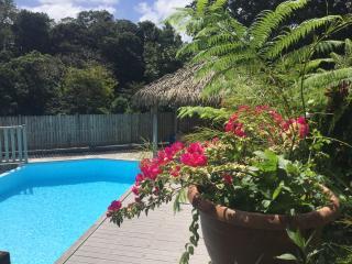 LES JOYAUX DE BALATA avec PISCINE chauffée + WIFI - Saint-Joseph vacation rentals