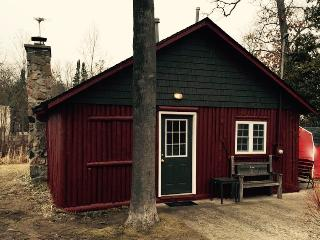 Schott-Away Log Cabin with Lake views and access. - Houghton Lake vacation rentals