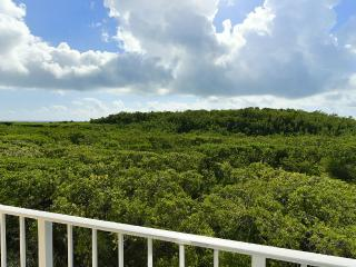 Stunning Ocean Front and Mangrove Views - Tavernier vacation rentals
