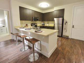 2 bedroom Apartment with Internet Access in Walnut Creek - Walnut Creek vacation rentals