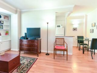 Bright Washington DC Apartment rental with Internet Access - Washington DC vacation rentals