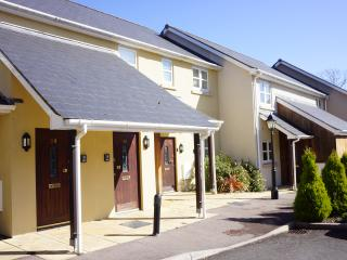 Exclusive short/long term stay in Monmouth,Wales - Monmouth vacation rentals