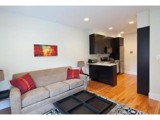 1 bedroom Condo with Internet Access in Boston - Boston vacation rentals