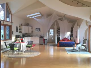 for the creative spirit, lightfilled loft house - Ulster Park vacation rentals