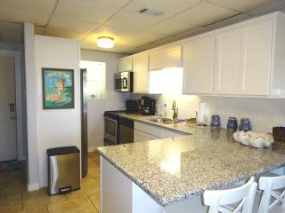 Seaside Pearl  Newly Remodeled.   OCEAN VIEW  2/2 - Port Aransas vacation rentals