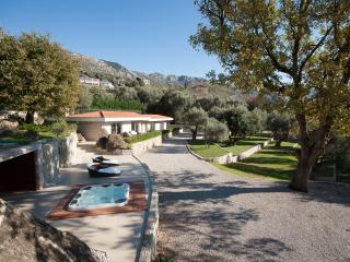 Luxury private house with big garden - Becici vacation rentals