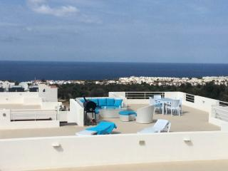 Jim's Pine Valley Penthouse Apartment - Ayios Amvrosios vacation rentals