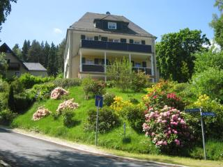 Villa Goldbrunnen - Ferienwohnung 3 / Apartment 3 - Bad Elster vacation rentals