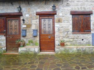 2 bedroom Condo with Parking in Piansano - Piansano vacation rentals