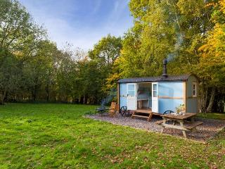 Sunny Shepherds hut with Housekeeping Included and Fireplace - Elham vacation rentals
