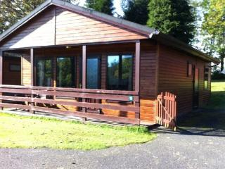 Birch Lodge 15, Newton Stewart - Beautiful lodges situated on Scotland's - New Galloway vacation rentals