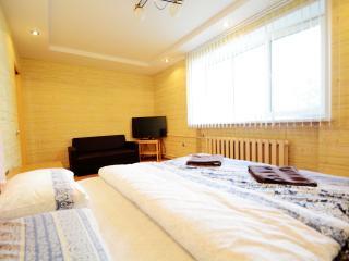 Aparton| Studio apartment - Zolotaya Gorka 6 - Minsk vacation rentals
