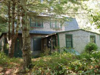 Classic Summer Home on Beautiful Long Pond - Plymouth vacation rentals