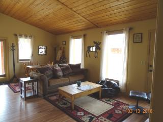 Cozy House with Dishwasher and Toaster - Fairplay vacation rentals
