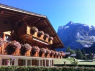 Apartment, Grindelwald with mountain (Eiger) view - Grindelwald vacation rentals