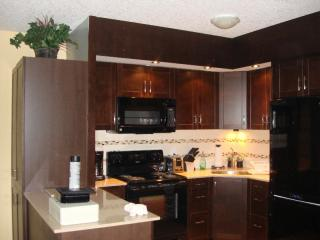 Nice Condo with Internet Access and A/C - Waterloo vacation rentals