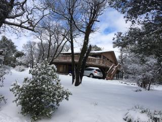Pheasant Hill Cabin, pet friendly and fun - Julian vacation rentals
