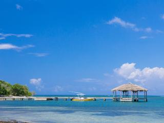 The Starfish - 300' From Beach - Sleeps 4 - Roatan vacation rentals