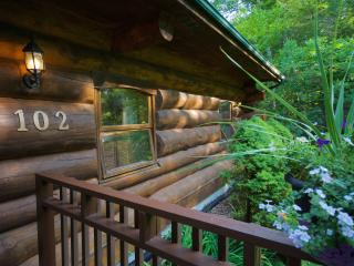 Scandinavian Log Cabin/Cottage - Point Clark vacation rentals