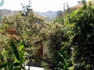 Cabanas Rio Yambala - The Hummingbird Suite - Vilcabamba vacation rentals