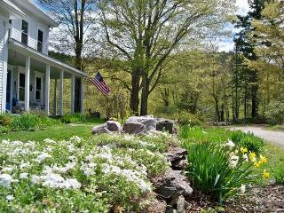 Beach room in Vermont! with homemade breakfast! - Perkinsville vacation rentals