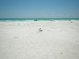 Comfortable House with Deck and Internet Access - Anna Maria vacation rentals