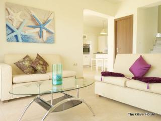 The Trees' Project...Orange or Olive - Gennadi vacation rentals