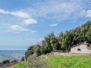 Pietrasanta's Hills - Pietrasanta vacation rentals